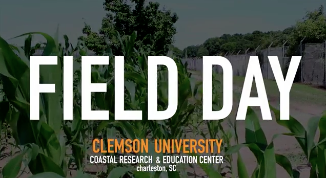 Video Thumbnail for Having a Field Day! Farmers Get Peek at Latest Agricultural Research
